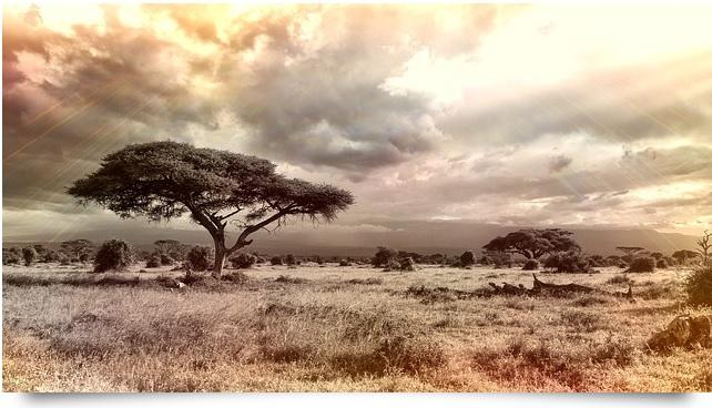 pxb-afrikanische-weisheiten