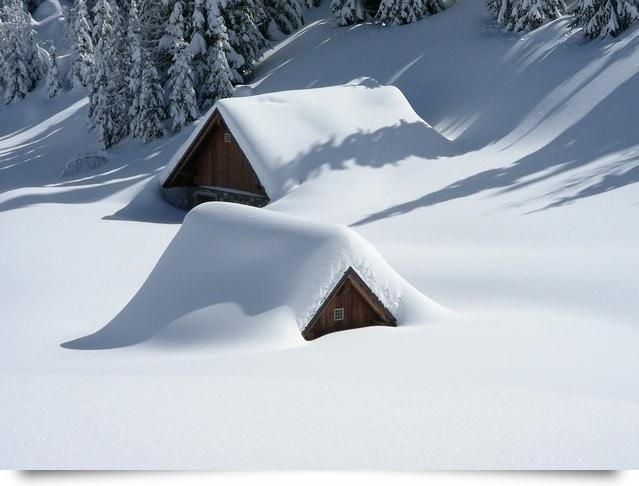 pxb-winter