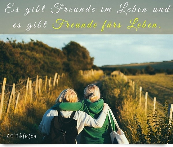 Freundschaft zitate beste freundin